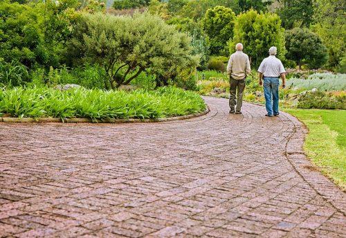 Two elderly gentlemen taking a walk. Stroke Survivor & Caregiver | Stroke Recovery Foundation