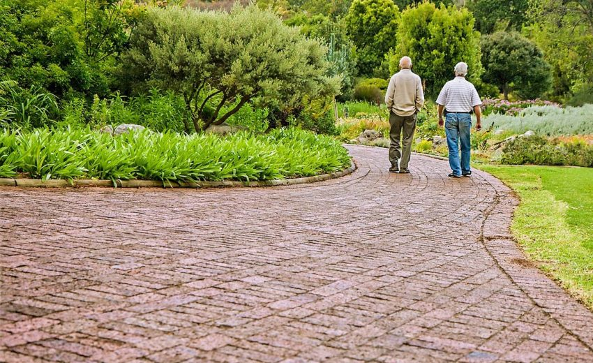 Two elderly gentlemen taking a walk. Stroke Survivor & Caregiver | Stroke Recovery Foundation